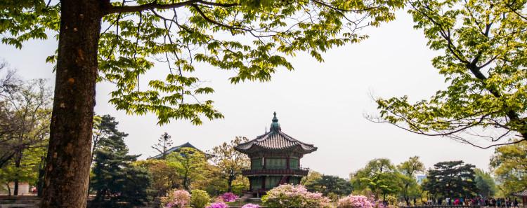 Gyeongbukgung Palace Garden