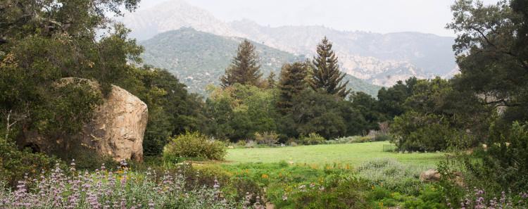 Botanic Gardens in Santa Barbara