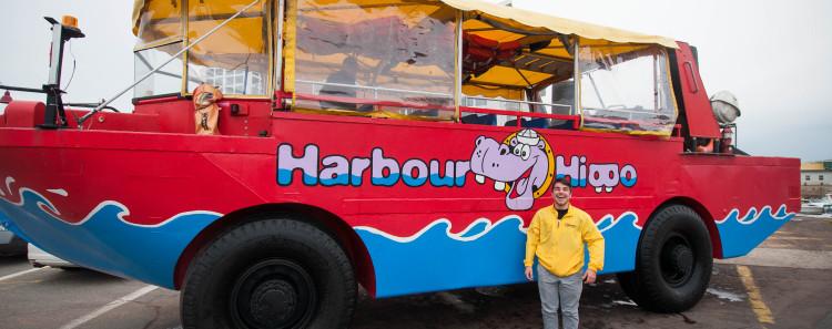Harbour Hippo